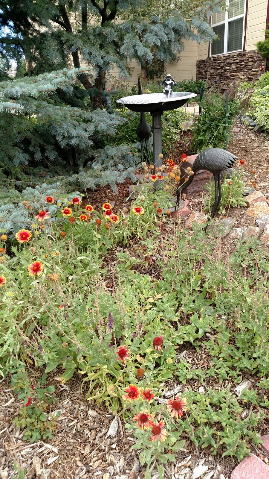 A bird bath and two nearby stork sculptures welcome avian wildlife to Melody Wilson's garden.
